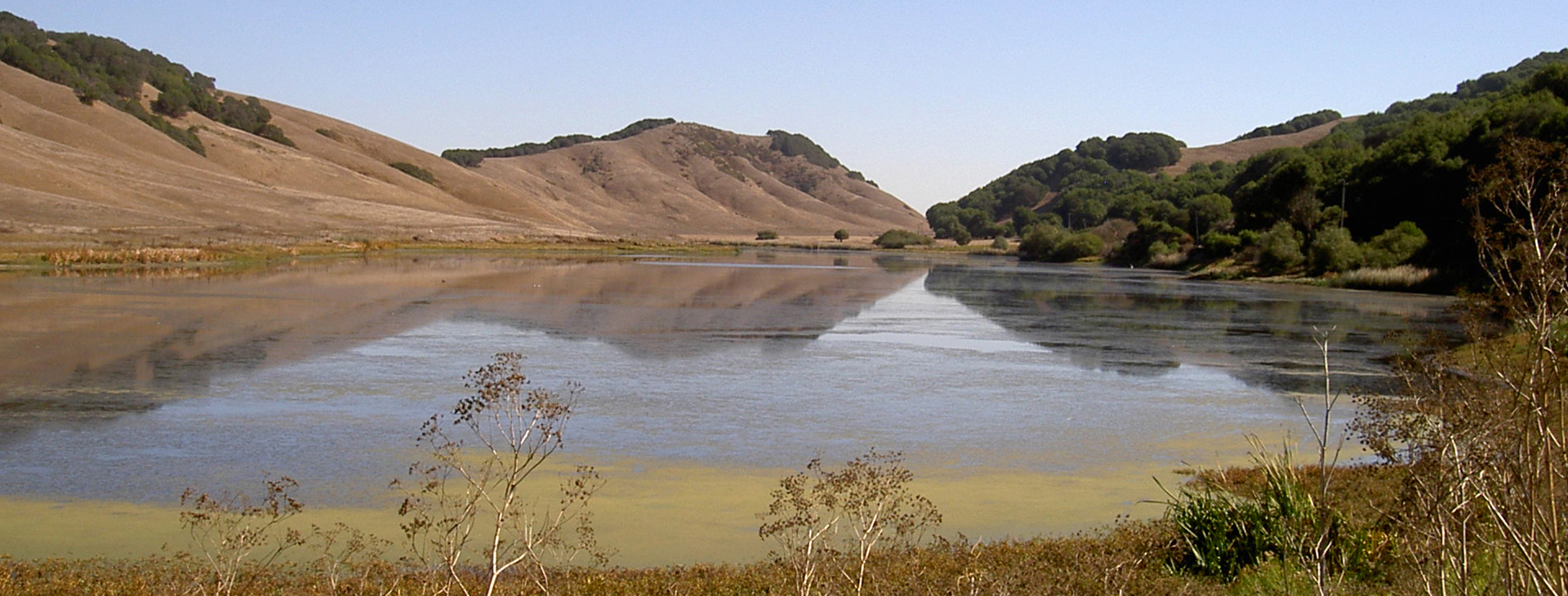 Laguna Lake - Marin County, CA