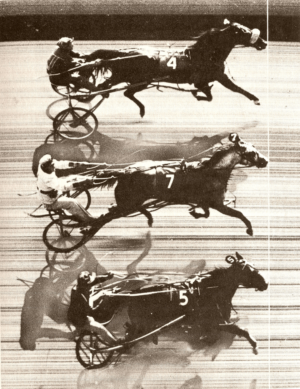 Triple dead heat at Freehold Raceway on 10/03/1953