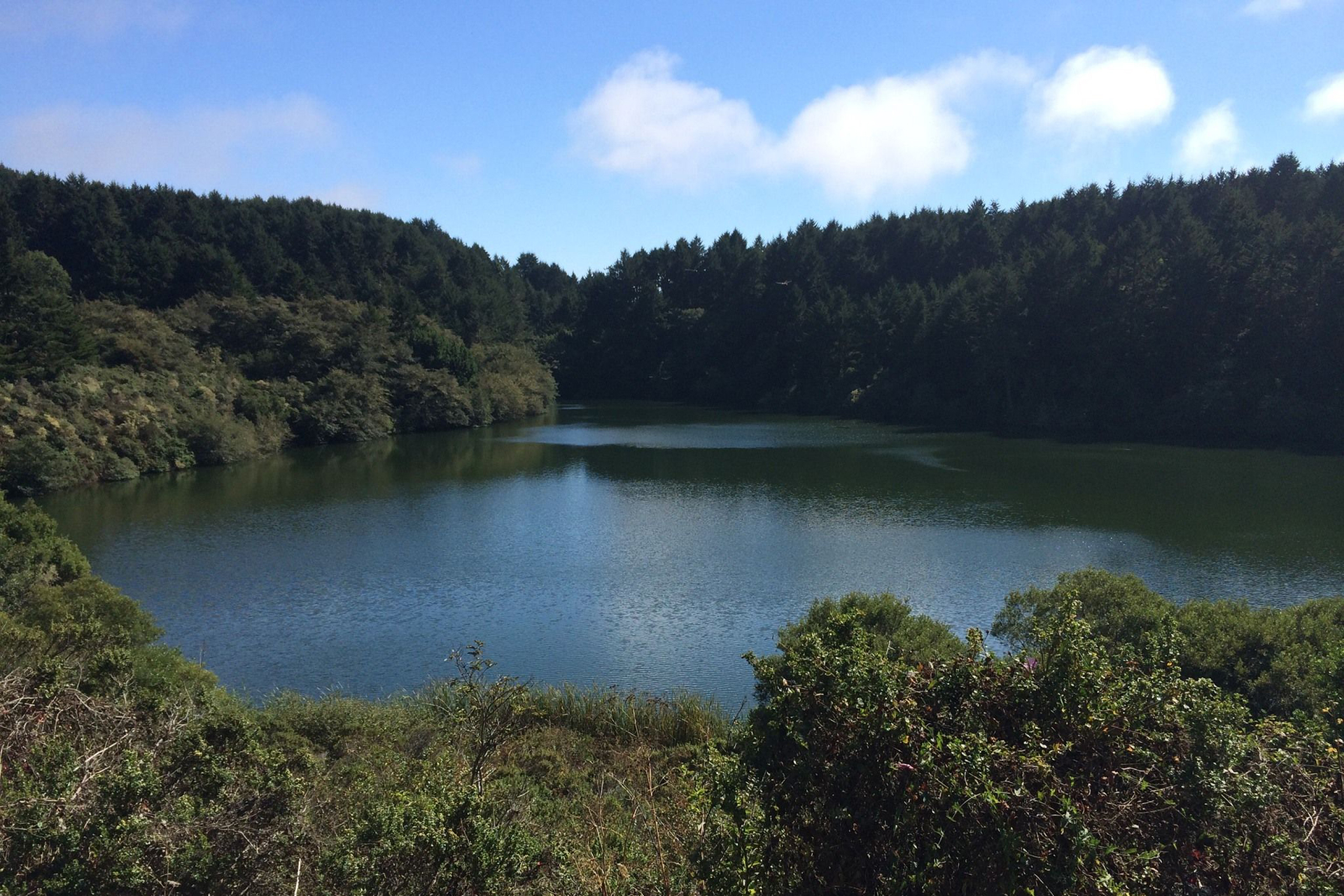 Bass Lake - Marin County, CA
