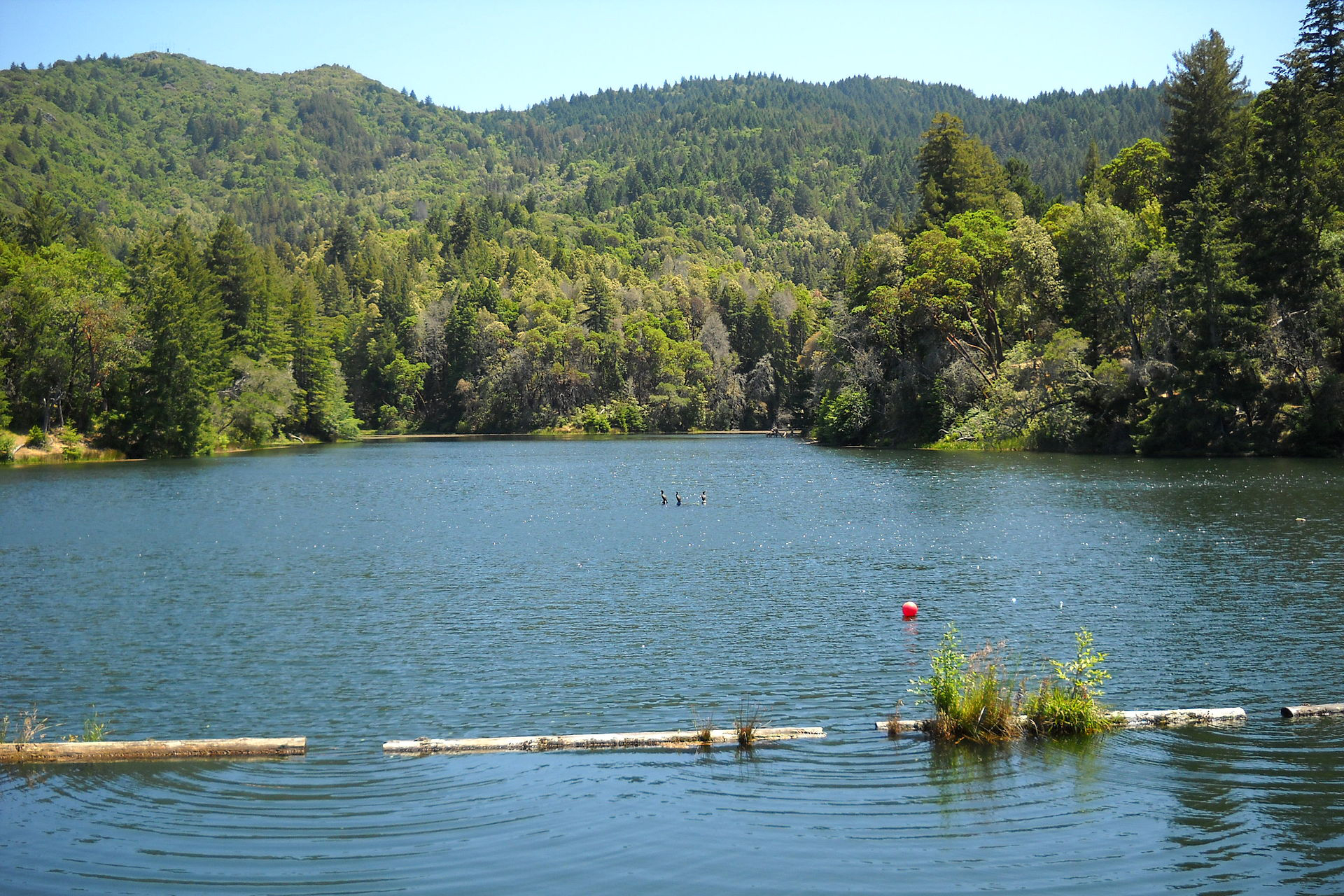 Lagunitas Lake - Marin County, CA