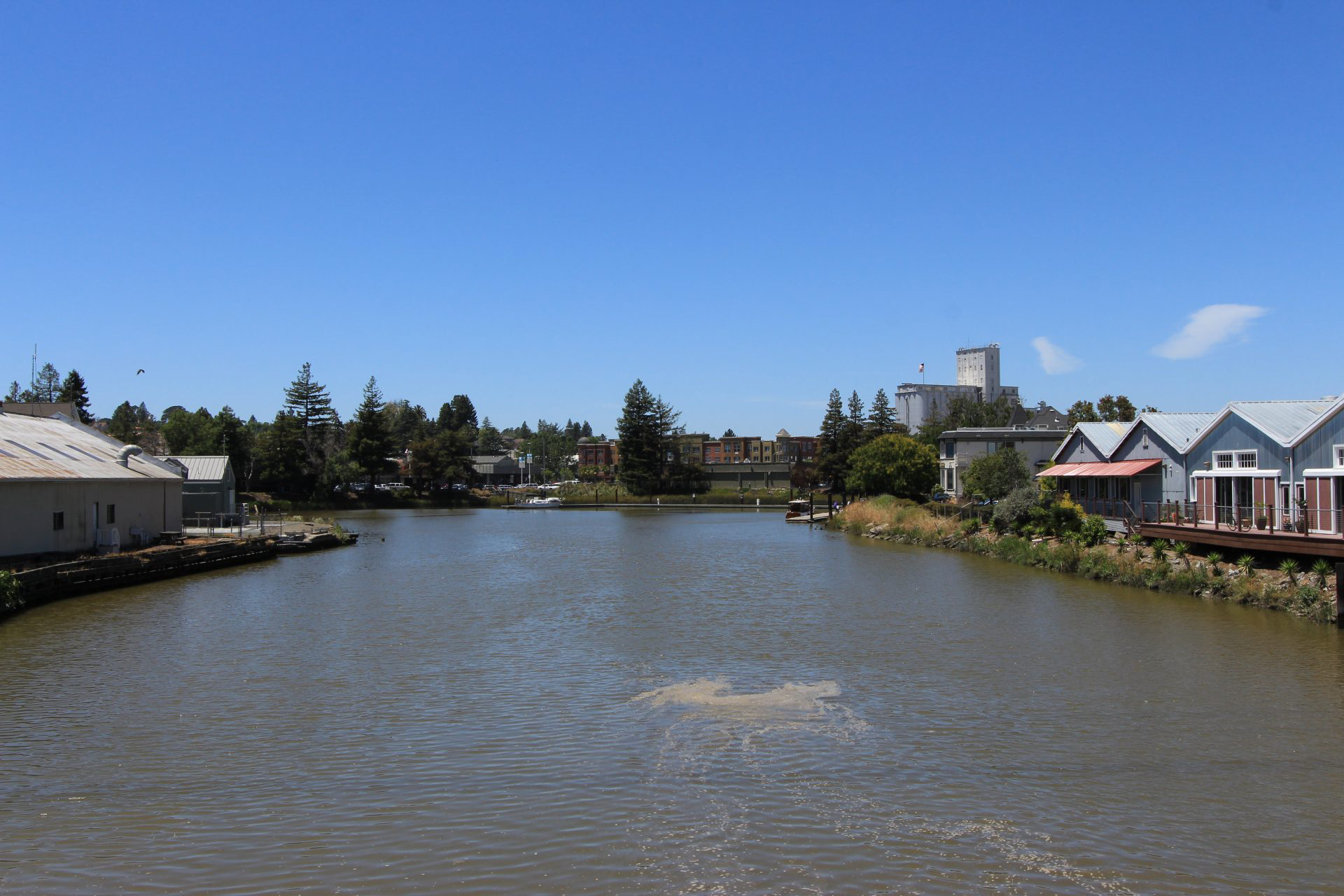 Petaluma River - Sonoma County, CA