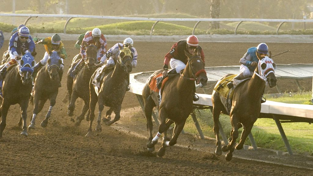Handicapping Resources | Expert Picks, Tips, Tools & Racing